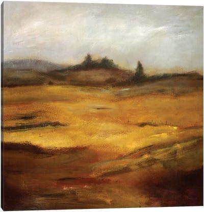 Quieter Than Anything Canvas Art Print