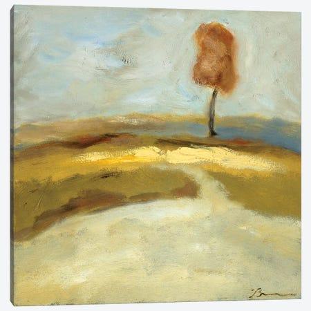 Spring Thaw II Canvas Print #BBR66} by Bradford Brenner Canvas Print