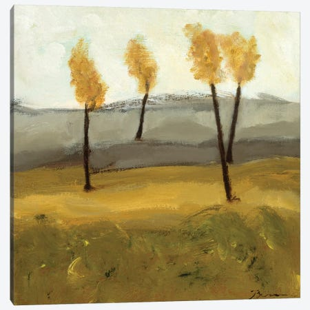 Autumn Tree IV Canvas Print #BBR75} by Bradford Brenner Canvas Art