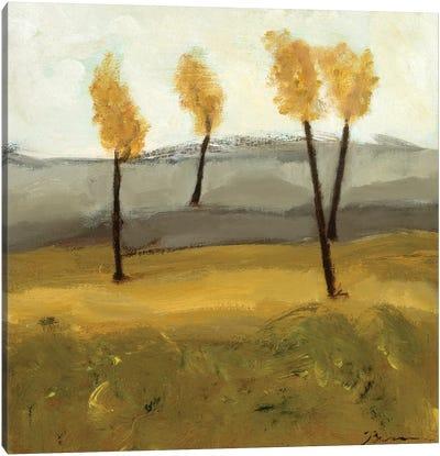 Autumn Tree IV Canvas Art Print