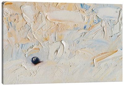 Found Your Marbles IV Canvas Art Print