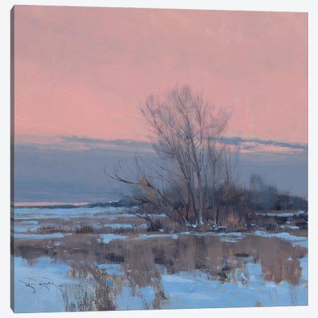 Day Break Near Menomonie Canvas Print #BBU11} by Ben Bauer Canvas Wall Art
