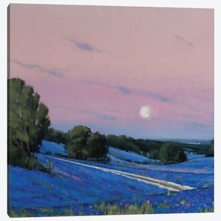 Hill Country Moonrise Blue Bonnets Canvas Print #BBU21} by Ben Bauer Art Print