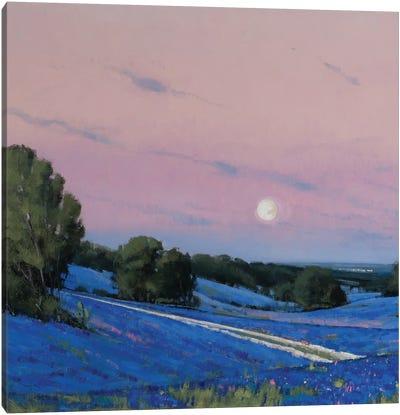Hill Country Moonrise Blue Bonnets Canvas Art Print