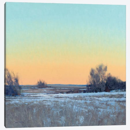 Late Afternoon In March Lowry MN Canvas Print #BBU27} by Ben Bauer Canvas Wall Art
