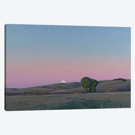 Moonrise In Lowry MN Canvas Print #BBU37} by Ben Bauer Canvas Art Print
