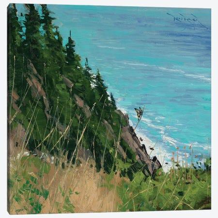 Oregon Coast Canvas Print #BBU41} by Ben Bauer Canvas Print