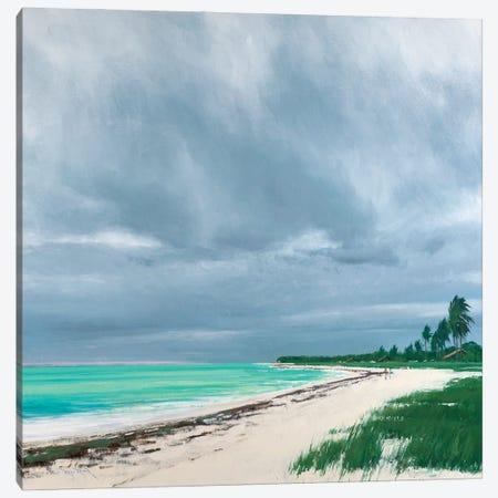 Sandspur Beach Florida Canvas Print #BBU48} by Ben Bauer Canvas Art Print