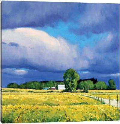 September Fields Lowry MN Canvas Art Print