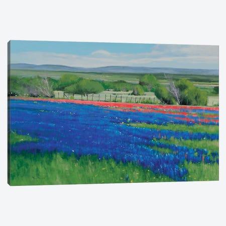 Texas Spring Canvas Print #BBU61} by Ben Bauer Canvas Art Print