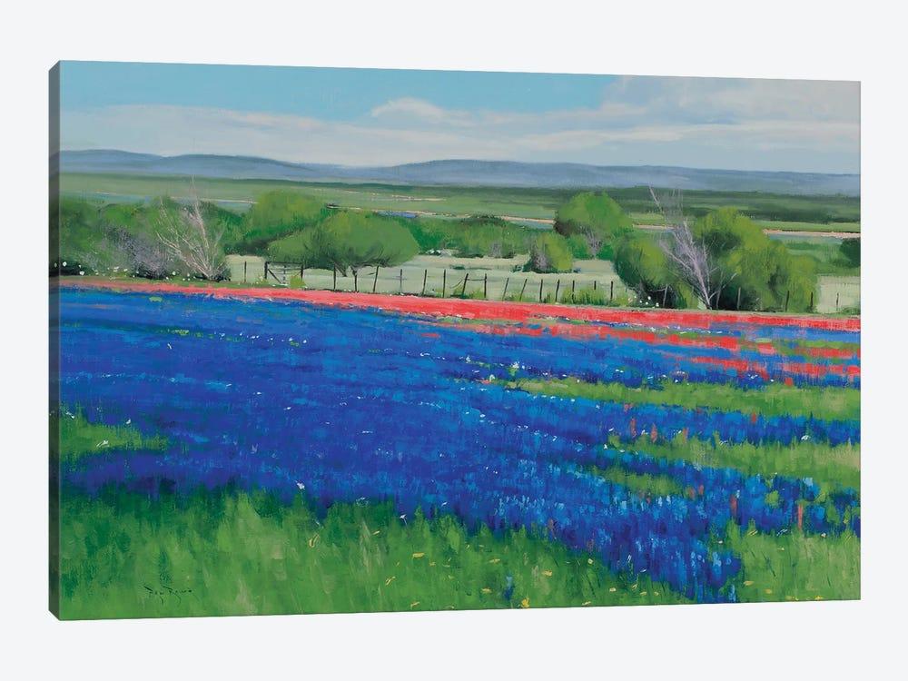Texas Spring by Ben Bauer 1-piece Canvas Art