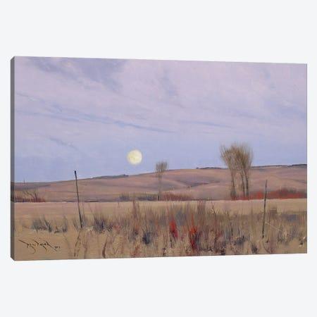 When We Walk These Fields II Canvas Print #BBU63} by Ben Bauer Canvas Print