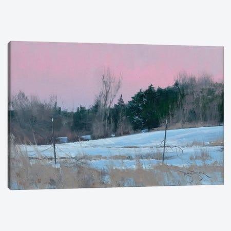 Winter Backyard Canvas Print #BBU64} by Ben Bauer Canvas Art