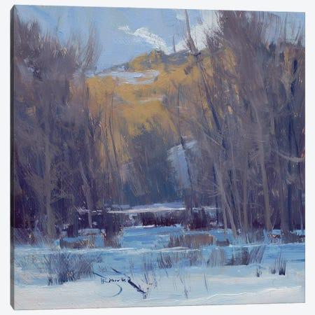 Belwin Memory Canvas Print #BBU7} by Ben Bauer Canvas Art Print