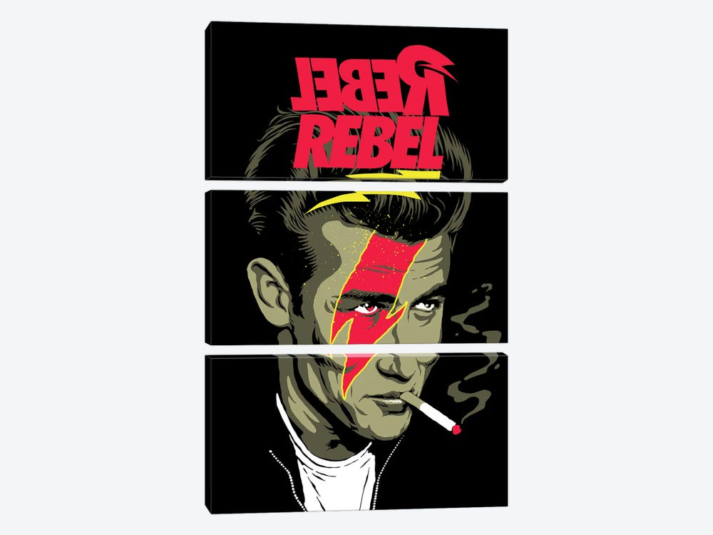 We Can Be Rebels by Butcher Billy 3-piece Canvas Print