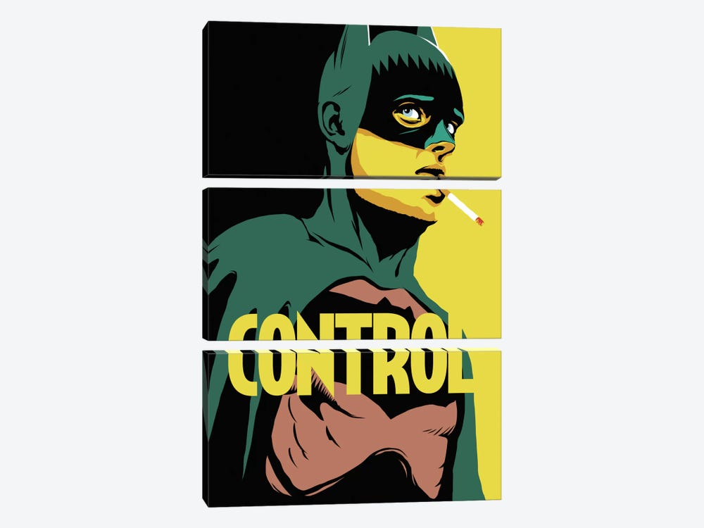 BatControl by Butcher Billy 3-piece Canvas Print