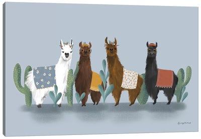 Delightful Alpacas V Canvas Art Print