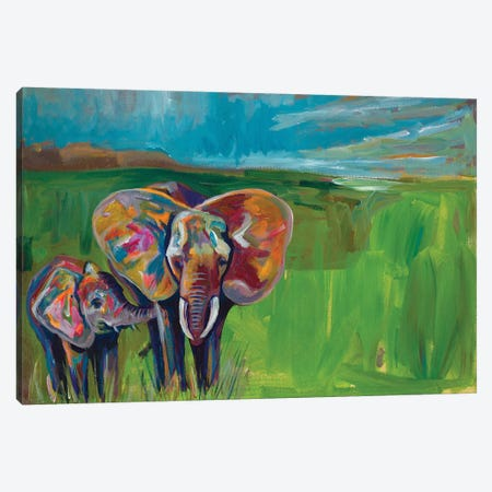 An Elephant's Love Canvas Print #BCM1} by Andy Beauchamp Canvas Artwork