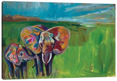 An Elephant's Love Canvas Art Print