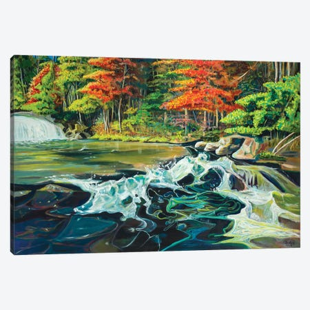 Running River I Canvas Print #BCM20} by Andy Beauchamp Canvas Artwork