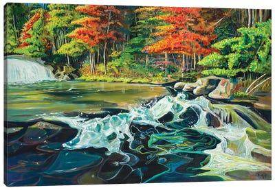 Running River I Canvas Art Print
