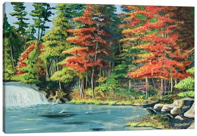 Running River II Canvas Art Print