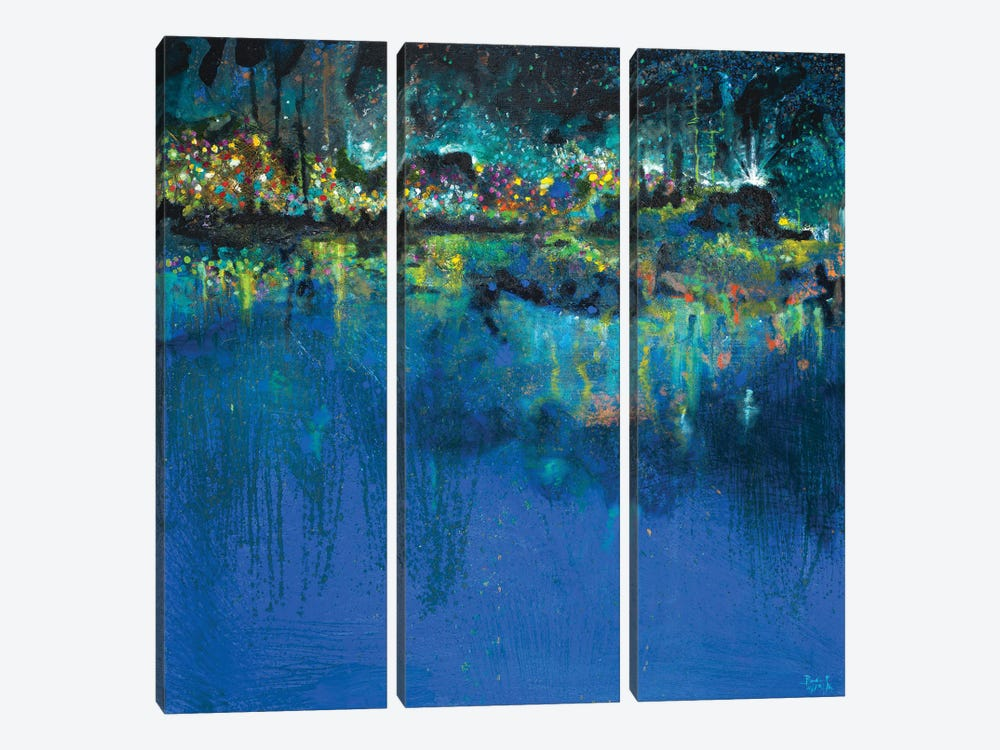 Lake Butler Abstract by Andy Beauchamp 3-piece Art Print