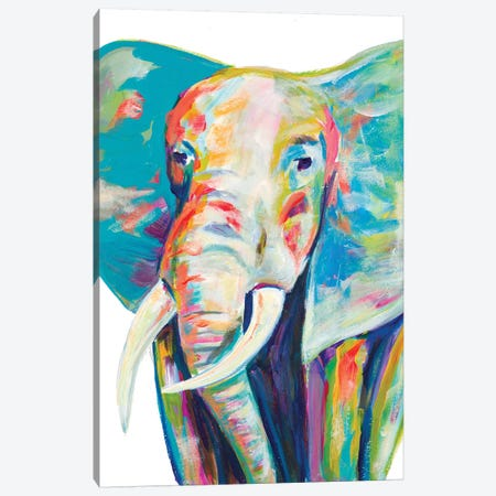 Colorful Elephant Canvas Print #BCM3} by Andy Beauchamp Canvas Wall Art