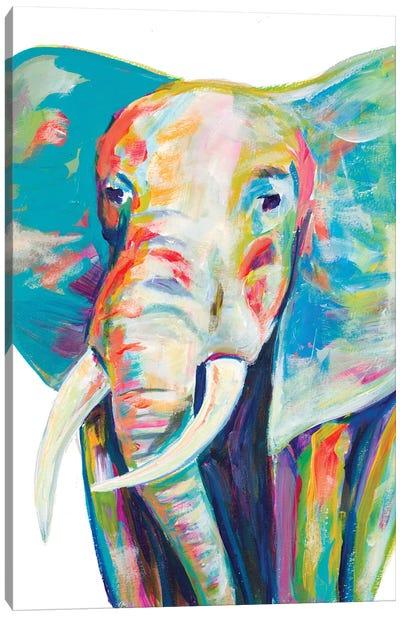 Colorful Elephant Canvas Art Print