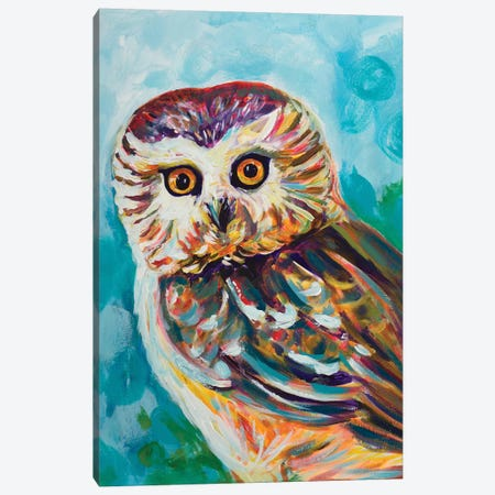 Colorful Owl Canvas Print #BCM7} by Andy Beauchamp Canvas Art Print