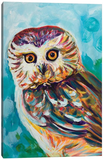 Colorful Owl Canvas Art Print