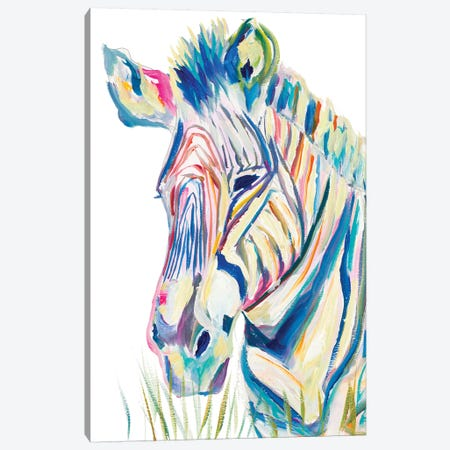 Colorful Zebra Canvas Print #BCM8} by Andy Beauchamp Canvas Art