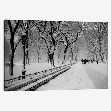 Central Park Snow Canvas Print #BCP13} by Bill Carson Photography Canvas Artwork
