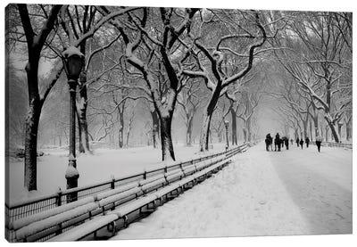 Central Park Snow Canvas Art Print