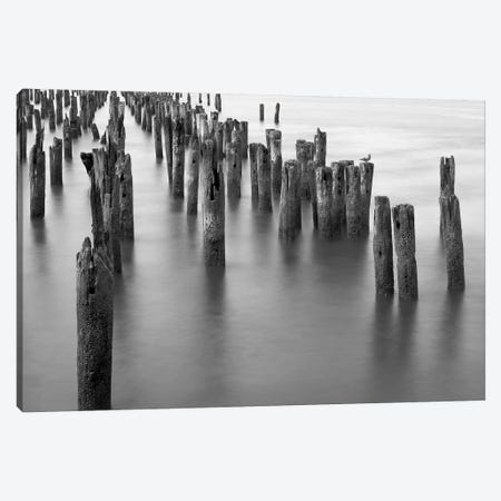 Hudson River Pilings Canvas Print #BCP20} by Bill Carson Photography Canvas Print