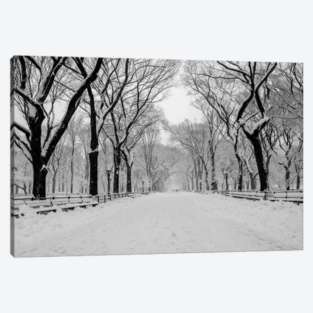 The Mall Washington DC Canvas Print #BCP41} by Bill Carson Photography Canvas Art Print