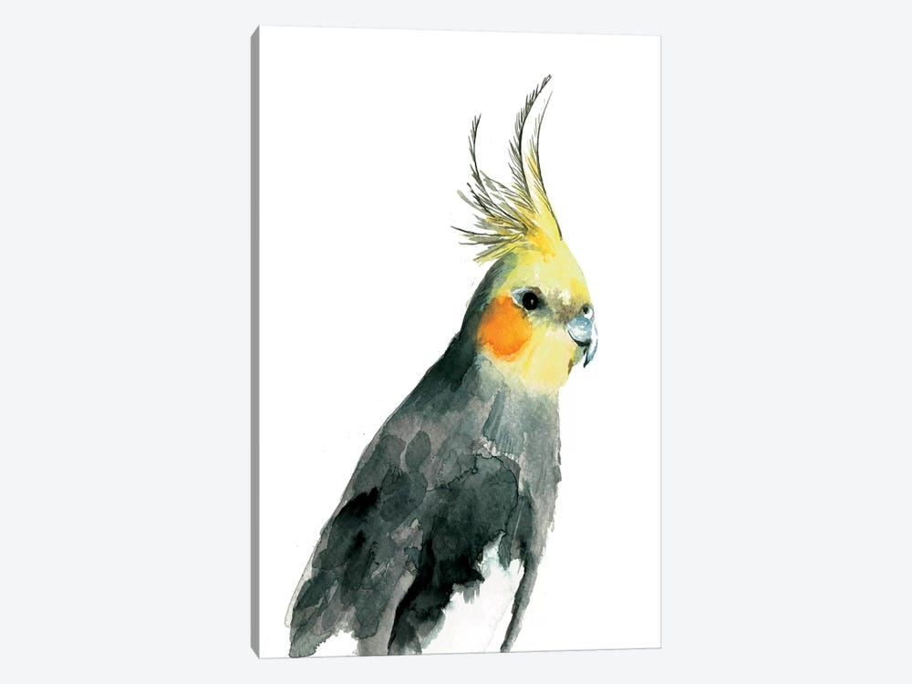 Cockatiel II by Albina Bratcheva 1-piece Canvas Wall Art