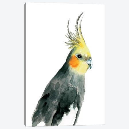 Cockatiel II 3-Piece Canvas #BCV10} by Albina Bratcheva Canvas Artwork