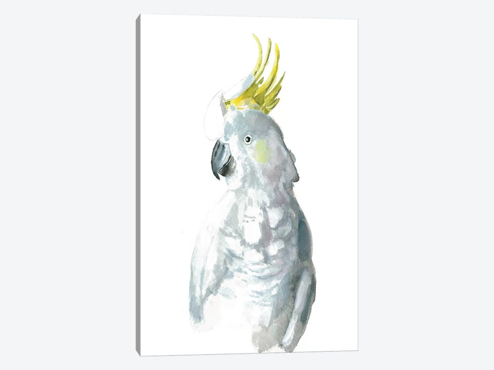Cockatiel I by Albina Bratcheva 1-piece Canvas Artwork