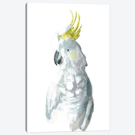 Cockatiel I 3-Piece Canvas #BCV9} by Albina Bratcheva Canvas Artwork