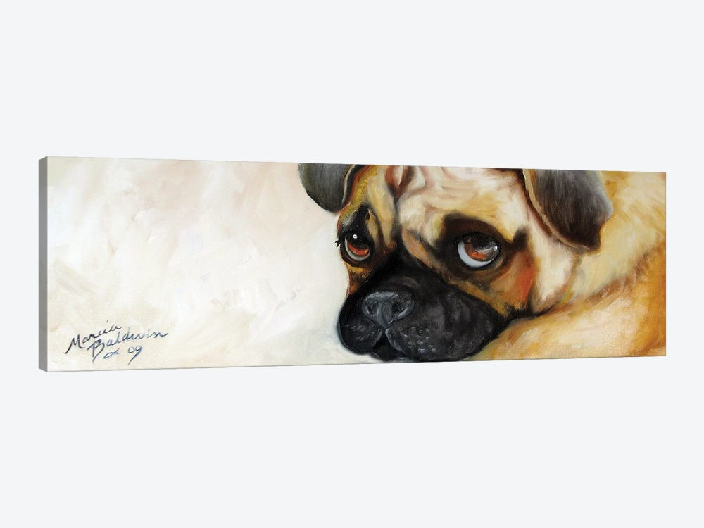 Cutie Pie Pug by Marcia Baldwin 1-piece Canvas Art Print