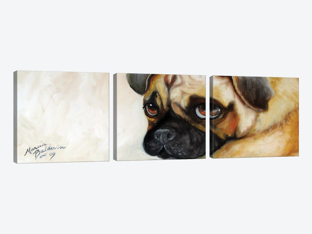 Cutie Pie Pug by Marcia Baldwin 3-piece Canvas Art Print