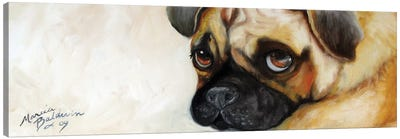 Cutie Pie Pug Canvas Art Print