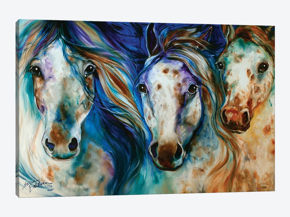 3 Wild Appaloosa Horses by Marcia Baldwin 1-piece Canvas Wall Art