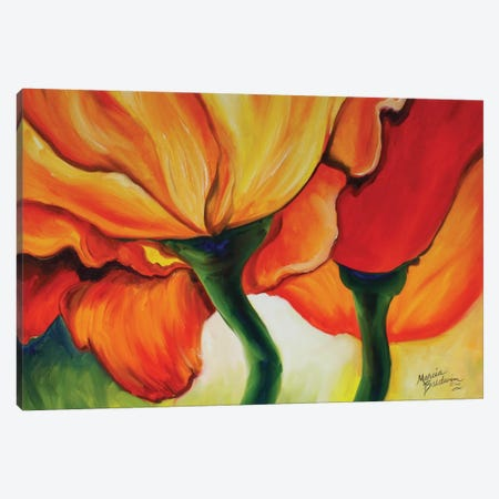 Golden Poppy Abstract Canvas Print #BDN31} by Marcia Baldwin Canvas Art Print
