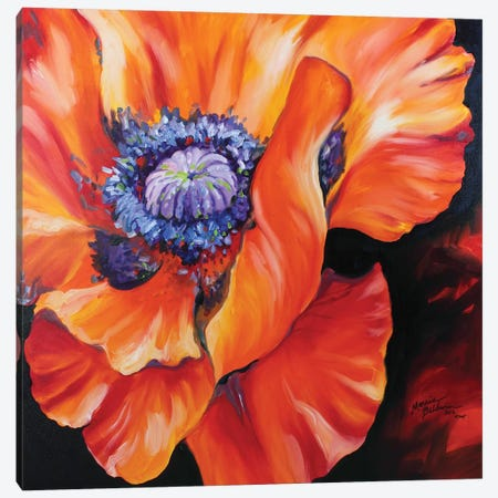 Heart Of A Red Poppy Canvas Print #BDN36} by Marcia Baldwin Canvas Art