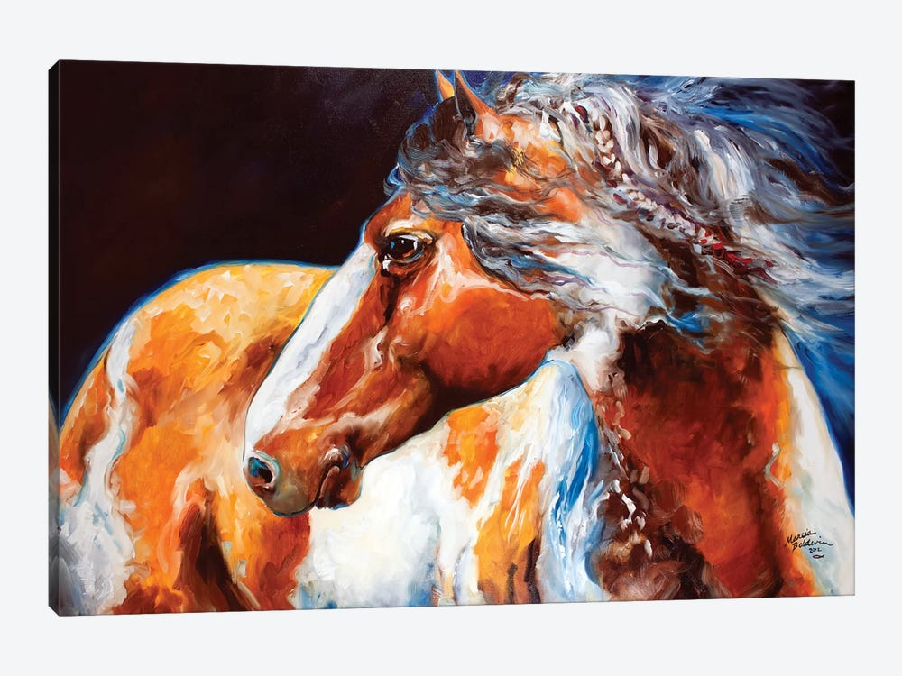 Mohican Indian War Horse by Marcia Baldwin 1-piece Canvas Artwork