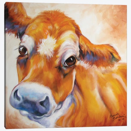 My Jersey Cow Commission Canvas Print #BDN42} by Marcia Baldwin Canvas Art