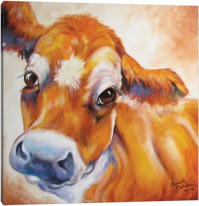 My Jersey Cow Commission by Marcia Baldwin Canvas Art Print
