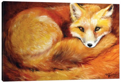 Red Fox Den Canvas Art Print